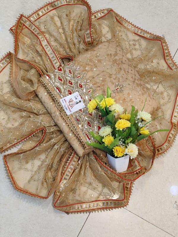 Designer Chikku Color Modal Chanderi Suit - Online Arihant Fashion
